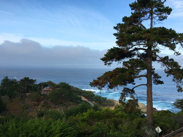 carmel highlands view