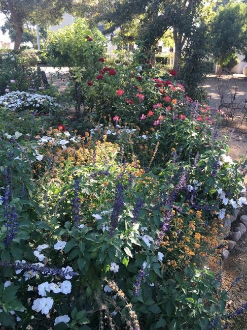 oak farm garden