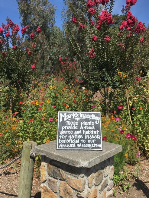 gun-bun-flower-garden