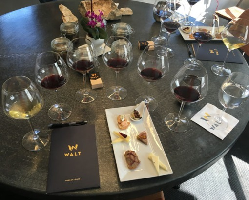 Walt Wines Root 101 Tasting: Wines of a Place