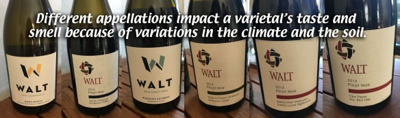 walt-wines